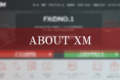 XMとは?