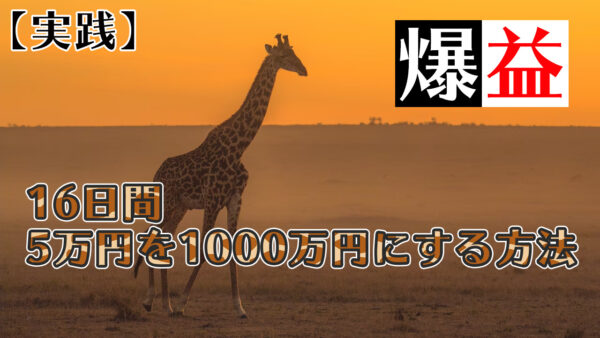 XM | 爆益、16日間で5万円が1000万円に!