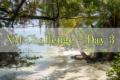 【3日目】XMチャレンジ | 1万から100万まで目指す